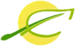cropped-Logo_Nr2_229px_breit-1.png